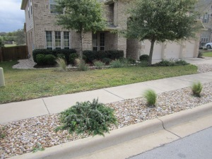 sod and stone with drought tolerant plants and builders shrubs.