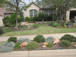 An alternative sod (Buffalo) Xerophytic beds and death strip and a moderate amount of stone makes a beautiful landscape to suit about any need. (Designed by Bob & Lana Beyer)