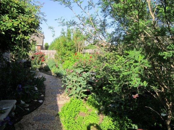 Low water low maintenance garden. Xeriscape at its best!