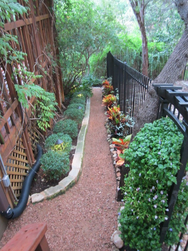 This is a very cool way to add a little somthin,- somthin to a very narrow space. Perennial evergreen shrubs to the left and variegated vines to the right accentuated by bursts of color from the annual/semi-annual Croton.
