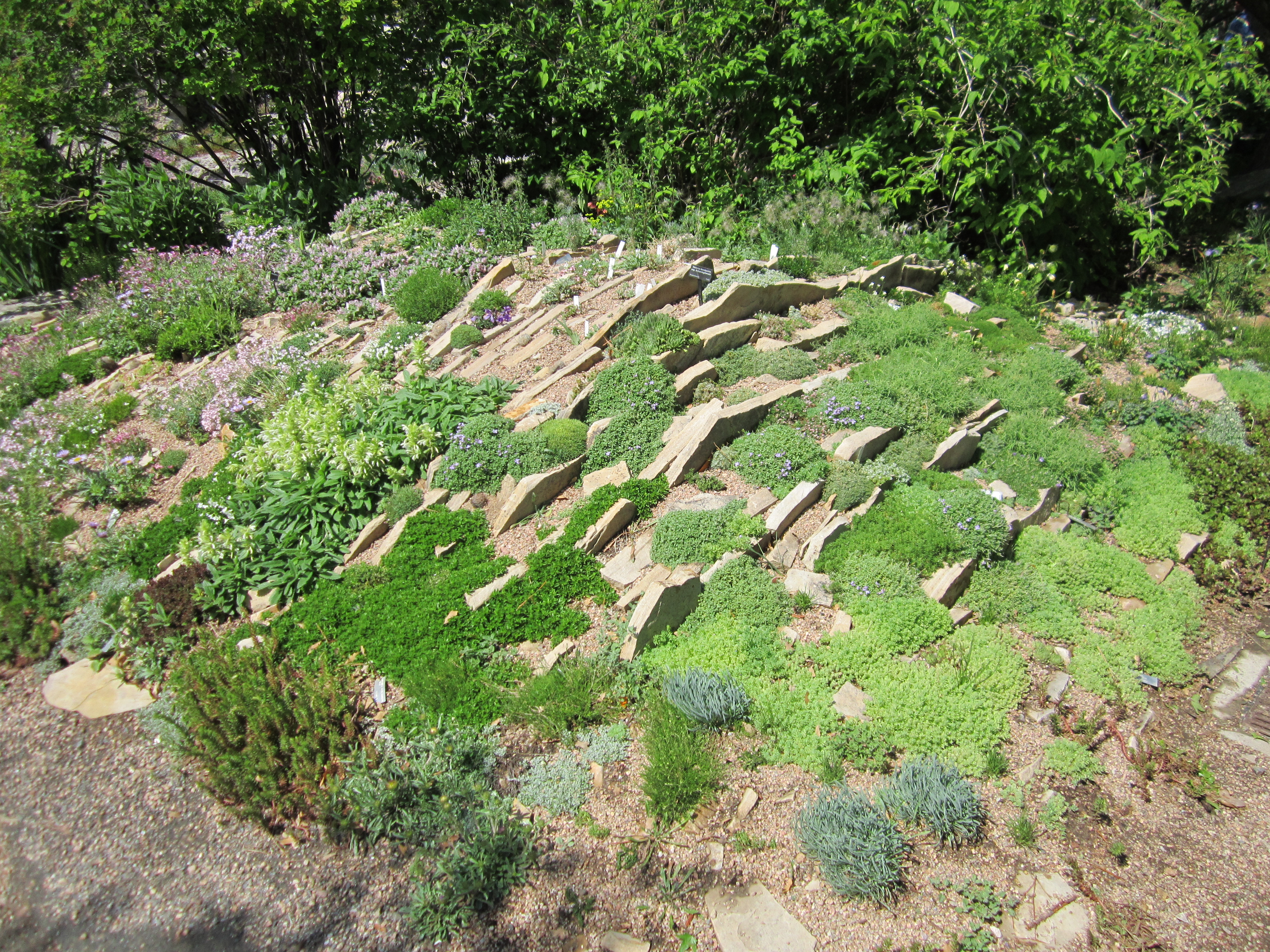 Landscaping Over Sand : Landscape design using architecture stone and clever