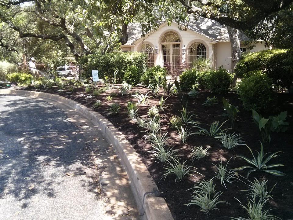Lisa Landscape Design Austin Tx: Saving The Planet One Yard At