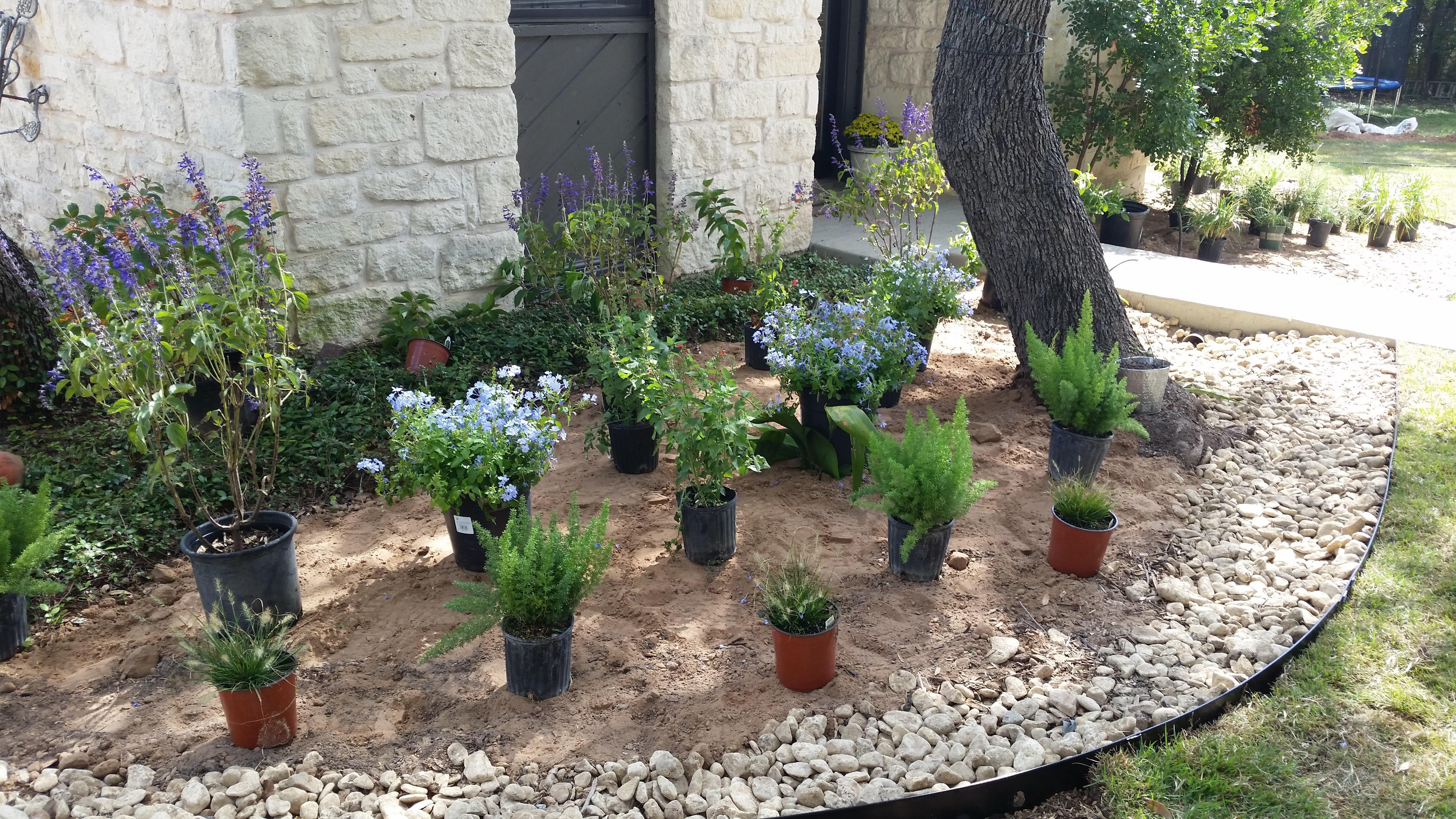 Lisa Landscape Design Austin Tx: How Do I Fix An Overgrown Bed?